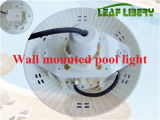 54W Ozeanien IP68 Surface Mounted RGB LED Pool Light 12W 12V Waterproof LED Spot Light