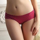 Panty Women Underwear 도매 이음새가 없는 숙녀