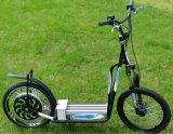 Costruito in regolatore! Grafico a torta magico 24V, 36V, kit elettrico di conversione della bici di 48V 250-1000With