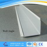 Griglia bianca tridimensionale /Bar di Fut T per il soffitto