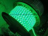 CE EMC LVD RoHS dos años de garantía, luz flexible azul de la cuerda de SMD LED (SMD3528/5050)