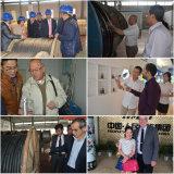 IEC ASTMの標準の良質のアルミニウムコンダクター鋼鉄によって補強されるACSR