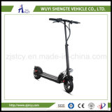 中国の製造業者の工場直売ほとんどの普及した電気スクーター