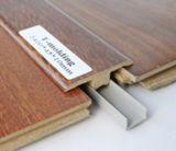 Modellando per l'uso della scheda di bordatura in pavimentazione