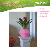 POT di fiore riutilizzabile del tessuto del feltro del giardino Oh-Lw-001