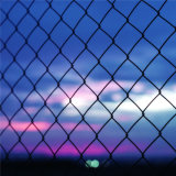 Chine Vente en gros Virgin Chain Link Fence for Building Protection (SN)