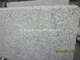 建築材料のトラの皮の壁のための白い花こう岩の平板か床またはカウンタートップ