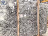 지면 /Wall 훈장을%s 높은 Polished 은 대리석 도와