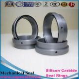 Anéis padrão e não padronizados da alta qualidade de silicone do carboneto do selo