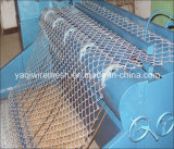 Link Chain Fence Galvanized/PVC Coated Made em China
