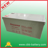 높은 Quality 200ah 12V Deey Cycle Gel Inverter Battery Nps200-12