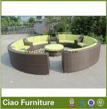総合的なPEの藤の庭の家具の屋外のソファー