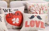 Ammortizzatore decorativo 100% della cassa del cuscino di tiro del cotone