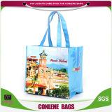Общего назначения хозяйственные сумки (KLY-PN-0103)