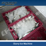 Schlamm Ice Machine für Fish und Meat Processing