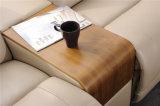 セットされる現代居間の家具の革ソファー(422)
