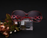 Zonnebril van de Acetaat van de Stijl van de Verkoop van de fabriek direct de Nieuwste voor Dame