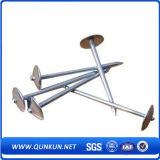 Высокий гальванизированный Quanlity ноготь толя хвостовика закрутки (фабрика)