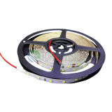 2835 점화를 위한 120LEDs/M 좋은 가격 LED 밧줄 빛 IP20