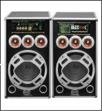 Grosser Karaoke-Lautsprecher S-219 Energien-Laufkatze DJ-Ststem aktiver PA-Bluetooth