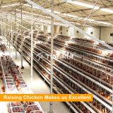 Самый лучший цыпленок поднимая типы Tianrui фабрики оборудования клеток цыпленка слоя