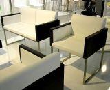 도매 가죽 나무로 되는 식사 의자 (NL-1006S)
