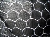 Frontière de sécurité électrique/à chaud de maille de Galvanizedwire (maillon de chaîne)