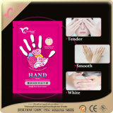 Pacchetto asciutto della mano dell'essenza - la mano & il chiodo screma - mascherine speciali della mano