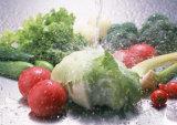 Contibuously Blattgemüse-Frucht-Kopfsalat-Kohl-Luftblasen-waschende Unterlegscheibe-Reinigungs-Maschine