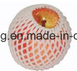 [بلستيك فوأم] شبكة لأنّ قاوون وأخرى [فرش فرويت] يعبّئ بلاستيكيّة ثمرة كم