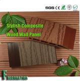 Panneau de mur composé imperméable à l'eau durable en bois WPC