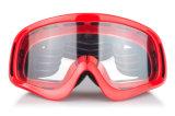 Anti-Rayer les glaces personnalisées de sports d'accessoires de motocross