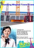 8 toneladas de China de grúa/grúa de la construcción Qtz100 (6010) con la carga del auge 60m/Tip: 1.0t