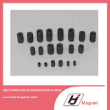 熱い販売は永久マグネット発電機の回転子の磁石をカスタマイズした