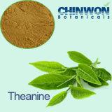 영양 보충교재를 위한 고품질 L-Theanine CAS No. 3081-61-6