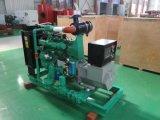 Gas generador de energía natural (30kVA-1000kVA) para la Planta de Energía Mini y Home eléctrico