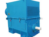 Ykkの製鉄所の使用された高圧モーター