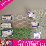 Сеть /Plastic сетки цыпленка плоская/пластичное плоское ловя сетью Forpolyethylene и пластичный полипропилен решетки