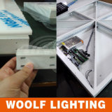 Woolf Portable LED Dance Floor Used Dance Floor voor Sale