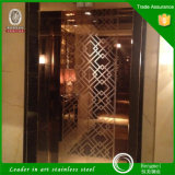 Elevator Parts를 위한 상단 10 Supplier Mirror Etched 304 Stainless Steel Sheet