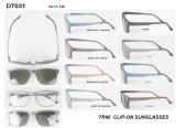 Óculos de sol Clip-on por atacado D7031 dos esportes do estoque Tr90 da alta qualidade