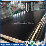 Fabrik-Verkäufe filmen direkt gegenübergestelltes Furnierholz-Handelsfurnierholz für Aufbau