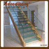 現代デザインガラスそして木製の内部のステアケース(SJ-X1069)