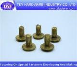 China-Hersteller-Messingdach-Schraube