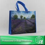 Sacs à provisions des sacs RPET de RPET (ENV-PET011)