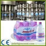Compelete automatische reine Wasser-Maschine
