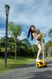 Mini vespa eléctrica de la movilidad de dos ruedas, Robstep M2
