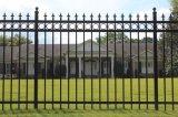 ゲートが付いている黒く標準的な庭の金属の塀