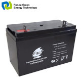 batterie solaire d'acide de plomb exempte d'entretien du gel 12V100ah pour le réverbère