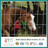 動物のための農場の塀の馬のヒツジのヤギの塀の牛フィールド塀